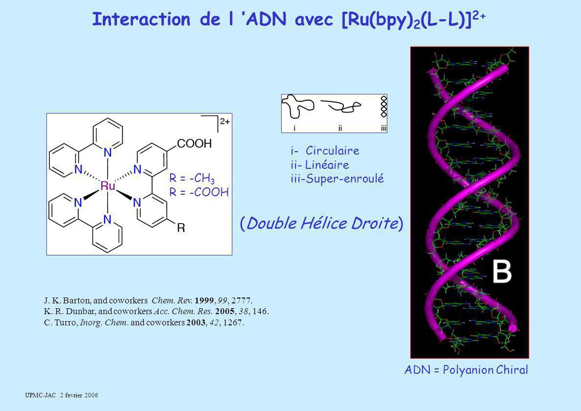 Interaction de l 'ADN avec [Ru(bpy)2(L-L)]2+